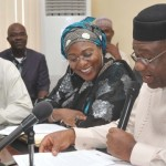 Successful Privatization Of PHCN Greatest Achievement Of Any Govt, Says Minister