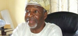 UPN Crisis Sponsored By Moles Of Another Political Party, Says Fasehun