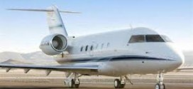 Minister In Private Jet Mess As Aviation Professionals Petition Jonathan