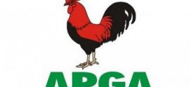 PDP Just Making Noise, Cannot Win Lagos – APGA
