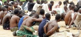 24 Suspects Arrested In Connection With Wukari Crisis – Police