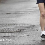 Exercise Without Antioxidants Accelerates Aging