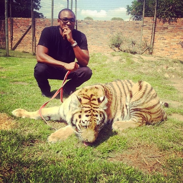 Image result for Sesan Ogunro and his Tiger