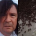 Woman Attacked By 75,000 Killer Bees And Stung 1,000 Times