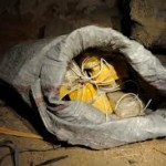 Police Uncovers Explosives Buried Inside Building In Bauchi