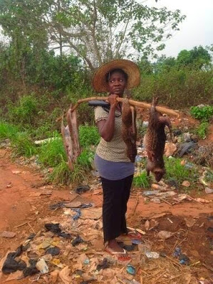 mercy_johnson_selling_bush_meat