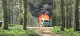 Family Vehicle Catch Fire on Picnic In The Middle Of Lion Enclosure