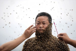 Beekeeper-covers-himself-with-more-than-460000-bees-3396745