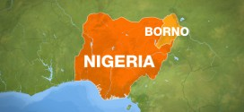 Boko Haram: 11 Women Delivered Of Babies At IDPs Camps