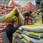 Wamakko: Nigeria Shouldn't Be Importing Rice