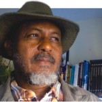 Opinion: Boko Haram Will Give Jonathan Second Term
