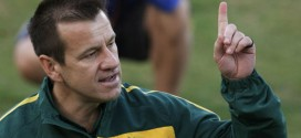 Brazil Name Dunga New Boss