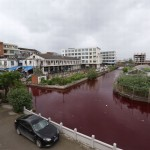 PHOTOS: River Mysteriously Turns Blood Red, No One Knows Why