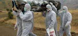 US To Evacuate Ebola Victims From Liberia
