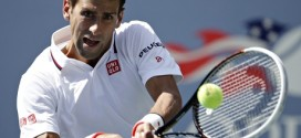 US Open: Murray, Djokovic, Tsonga Breeze Into 3rd RND