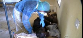 Ebola: FG Approves N200m For Lagos, U.S Govt Donates 30 Body Scanners