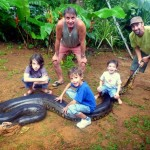Maths Teacher catches Gigantic Dog Eating Anaconda