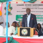 Ebola: Fashola Challenges Iwu To Reopen Research On Bitter Kola Theory