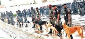 Lagos CP Okays Deployment Of Sniffer Dogs To Collapsed Building Site