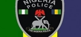 Gombe Police Parades 22 Suspected Thugs, Recovers Dangerous Weapons
