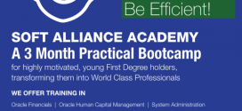 SOFT ALLIANACE ACADEMY COMMENCES WORLD CLASS IT  TRAINING