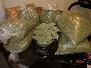Packaged weed ready to hit the streets!