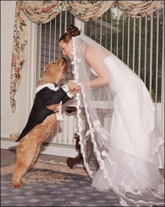 marrying_animals_to_exorcise_ghosts