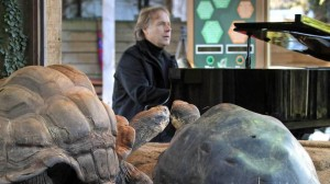 Pianist Performs Love Songs For Tortoises To Encourage Mating