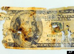 Dog Eats Cash