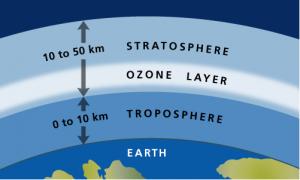 Ozone1