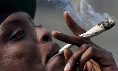 Marijuana, Safer Than Painkillers — STUDY