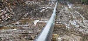 pipeline-vandalism_89798