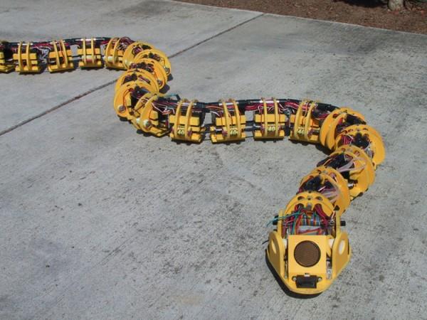 roboticsnake