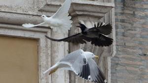 vatican-pope-doves