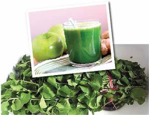bitter-leaf-juice