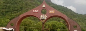 coe hong