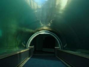 underwater_tunnel_generic_thinkstock_360x270_22