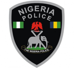 Nigeria-Police-Force13-300x277