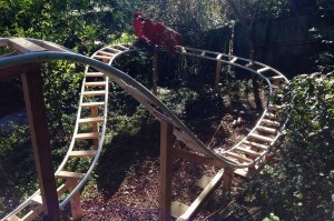 Roller-Coaster-in-back-garden