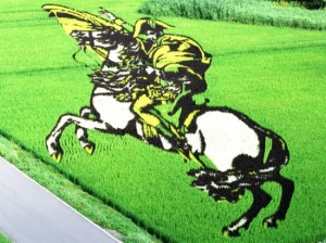 Believe It Or Not, This Art Work Is A Rice Farm