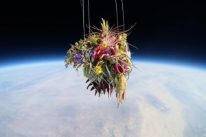 Artist Launches Flower Arrangements Into Space