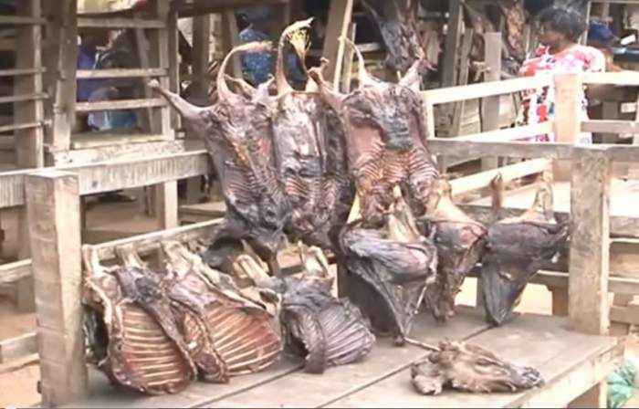 nigeria-bush-meat-selling