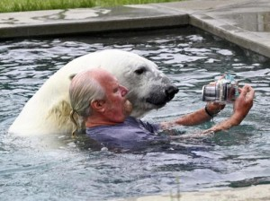 Too Many Smartphone Users Taking Dumb, Dangerous Selfies With Bears
