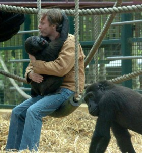 Meet the Millionaire Who Dedicated His Life to Raising Gorillas and Releasing Them into the Wild