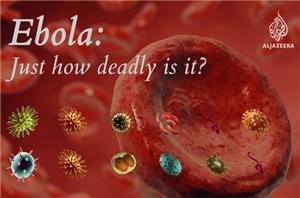 Spanish nurse's immune system eliminates Ebola infection from her body