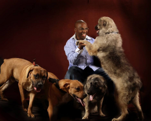 Ex-Gov Ikedi Ohakim having fun with his humongous dogs